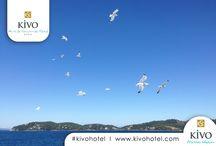 Kivo Skiathos Collection / Skiathos experience
