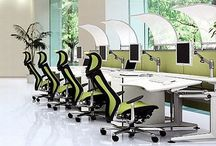 The most ergonomic offices you will ever see!