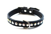 Puppy collars / Smaller Collars for puppies. A start to fun, flair and fashion for your pup.