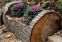 Landscaping / Log planters