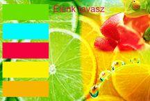 Évszakok színvilága / A tábla a különböző évszaktípusok színeiről szól