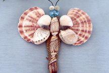 midye kabukları
