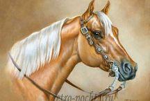 """Животные на открытках. / Кошки, собаки, мышки, лошади и другие животные на открытках, издаваемых ИД""""Фолиант"""""""