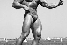 Golden Era Bodybuilding / In bodybuilding the 1950s to 1970s were known as the golden age of bodybuilding. Its no wonder with famous bodybuilders like Arnold Schwarzenegger, Dave Draper, Larry Scott and Franco Columbo among others all at the peak of their powers.