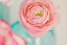 pretty in pastel