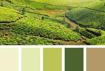 Palettes / Choix de couleurs