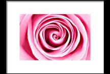 PINK VORTEX - DESIGN / Ayaneart.com - Shop Online #home #decor #artforsale #Painter #Painting#Art #Abstract #abstractart#abstractpanting #artlovers #acrylic#contemporaryart #onlinesale #canvas #print #bag #artprint #canvasprint #cover #coverphone #card #greetingcard #pillow #decoration #home #design #house #mug #yoga #yogamats #tshirt #poster #wallart #fleeceblankets #duvetcovers #shower #bathtowels #handtowels #coffeemugs #totebags #mobilecases