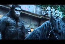 ~GRATUIT~ Voir La Planète des singes : l'affrontement Streaming Film en Entier HD