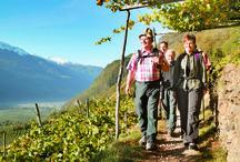 Naturns und Umgebung / Wandern, biken, Nordic walking und einfach die Aussicht genießen in der wunderbaren Natur der Südtiroler Berge.