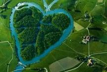 Harten troef / Harten in de natuur