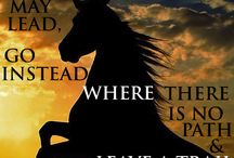 Inspiration / Some endurance/horse related inspirational thoughts that have caught our eye.