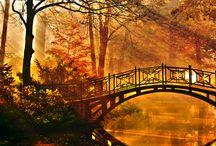 Bridges / by Penny McGahen