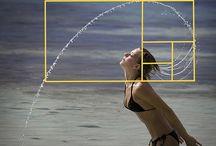 Fibonacci, the golden mean / by Robin Maker