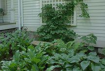 Landscaping, Gardening & Other Backyard Oasis Ideas