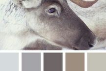 Colour Palette's / Struggling with putting colours together? Here is some inspiration xxx