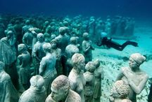 Underwater Photography / by MaduroDive