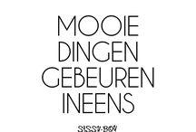 Nederlandse text's
