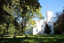 Park przy Pałacu Sulisław