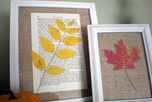 <3 Fall <3 / Fall is my favorite season from decorating to recipes to scents :)