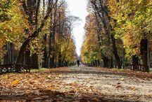 Sightseeing @ Cluj-Napoca