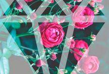 + Цветы