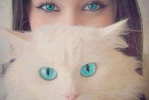 Cat's <3 Kitty's <3