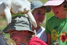 Kids on Safari / South Africa is a heavenly destination for kids on safari. Since most visitors are here to appreciate the outdoors, even the most hardened PlayStation addicts need some healthy and educational time outdoors. Selected game lodges throughout South Africa offer a truly memorable and interactive experience in the wilderness for families travelling with children.