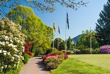 Golf Club Lugano / A game of golf and the culinary delights of the Club House Lugano