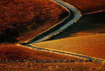 Secret Path / Path, Secret Path,Small Roads,Pathway,
