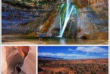 Western trip summer 2015 / Utah, Wyoming, Montana, Idaho / by Tracy Sodini