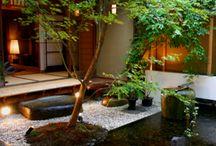 Garden ideas / Garden designs and plant ideas for the retaining wall