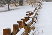 FENCES / by Connie Sampson