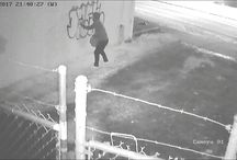 Viral Video - VIDEO - Caught Vandalizing In Oregon