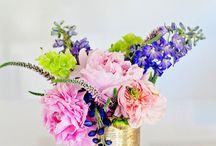 KVETY/FLOWERS