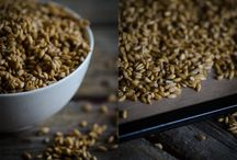 Recipes for Sprouted Grains and Pulses / Sprouting increases the bioavailability of minerals and increases the vitamin content of whole grains, nuts, seeds and pulses. / by Nourished Kitchen
