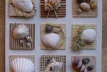 Sea Shell Ideas