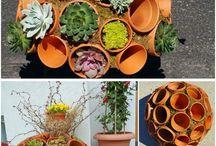 tuin/ planten