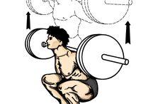 Gym - Workout