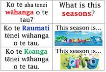 Maori Language week