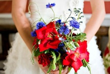 Americana (Red & White & Blue) / by Sylvia Stacey
