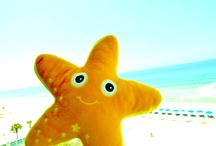 Sandy, the Starfish / Follow the adventures of Sandy, our starfish mascot, as she visits interesting places in Panama City Beach and Panama City Florida.