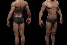 남성 인체