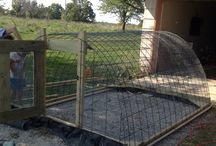 Chicken tractor / by Alexis Wheeles