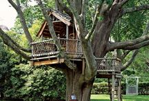 Tree House / Treehouses / by Janet Wohleber