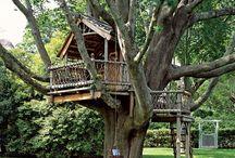 Tree House / Treehouses