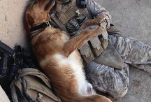 Love Our Soldiers