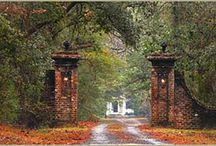Georgetown, SC / by Garden City Realty