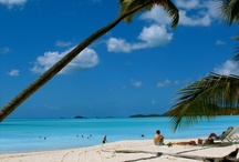Dream Beaches / Aren't these beaches amazing? We love them and want to take you there! www.holidaygenie.com