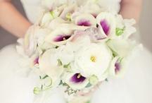 Weddings I love / by Melanie DiBiasio