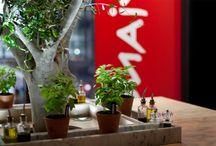 restaurant interiorism